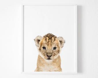 Lion cub Print, Safari Nursery Animal Wall Art, Baby lion Shower Decor, Digital Download Large Printable Poster, Nursery Decor, Animal print