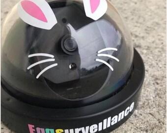 Bunny Cam, Eggsurveillance, Easter Bunny, Kids Bunny Camera, Bunny Camera, Kids Camera, Easter, Bunny, Kids Games, Games, Easter Games