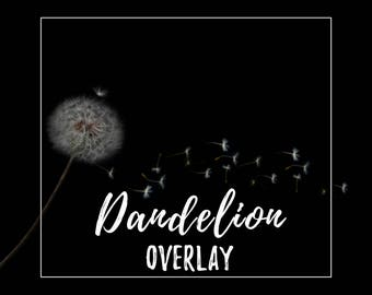 Dandelion Seed Overlay for Photographers