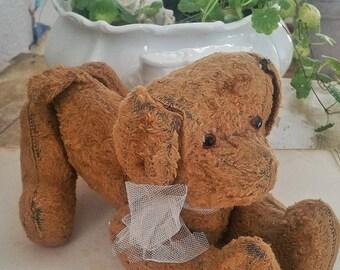Rarity! Pre-war stuffed dog teddy from the 19th century.
