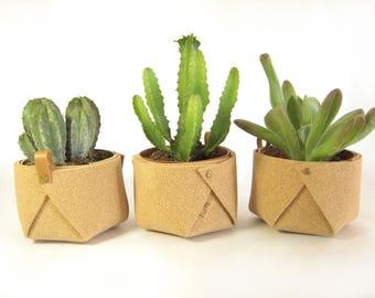 Cache-pot en liège / petit pot pour plantes grasses et cactées / fait main