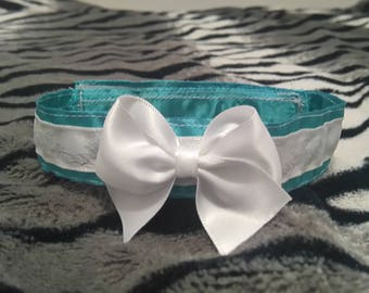 Teal And White Velcro Day-Kitteh Collars