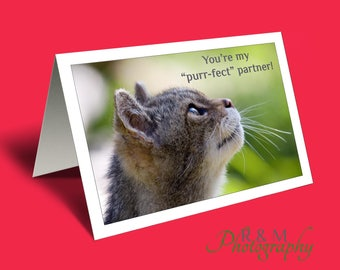 valentines card - love you card - valentine card - cat lover card - funny saying card - card for him - card for her - funny cat card