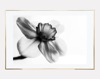 scandinavian print, affiche scandinave, grey flower print, floral poster print, scandinavian poster, downloadable prints, instant download