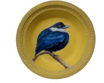 Blue Bird on Yellow Plate