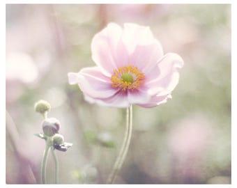 flower photography, pink flowers, sage green, nature photo, flower wall art, floral art print, romantic home decor, fine art photography