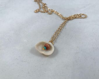 White Sea Shell Necklace, Real Shell Necklace, White and Tan Sea Shell Necklace