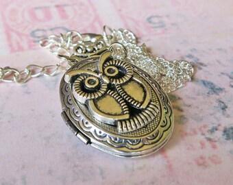 Owl Locket Necklace, Silver Owl Pendant, Harry Potter Inspired Locket, Hedwig Owl Necklace, Nite Owl Locket, Great Owl, Snowy Owl Necklace
