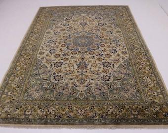 Exquisite S Antique Rare Light Najafabad Persian Rug Oriental Area Carpet 10X14