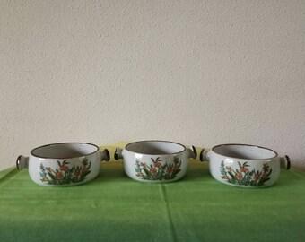 3 soup bowls wanted plant motif