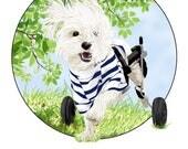 Illustration Print, Art Print, Inspirational Print, Dog Print, Dog Art, Different Is Beautiful, Dog Print, Happy Art