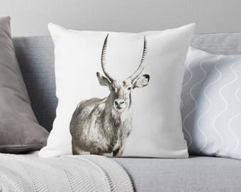 Antelope Cushion Cover - Throw Pillow - Great Gift for Animal Lovers - Wildlife - Waterbuck Cushion - Decorative Cushion Cover - White