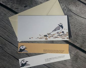 White wagtail greeting card with envelope and 2 bookmarks