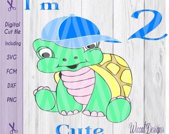 Turtle svg, boy svg, birthday svg, two svg, Turtle dxf, kids image svg, kids svg, digital cut file, scanncut file, boys t shirt designs