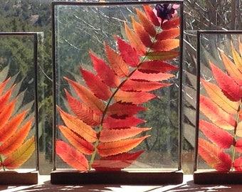 Holiday/Christmas Stained Glass Botanical Window Hanging Three Sumacs