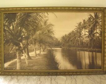 vintage 1920's Florida photo in frame