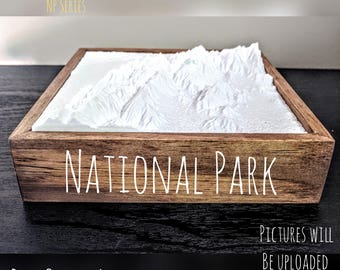 Sequoia National Park - 3D Printed Topographical Landscape 6 x 6 model