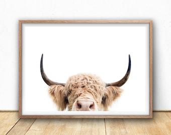 Highland Cow Print -  Farm Animal Wall Art, Digital Download, Cow Poster, Cattle Photography, Animal Portrait, Cow Closeup, Farm Nursery