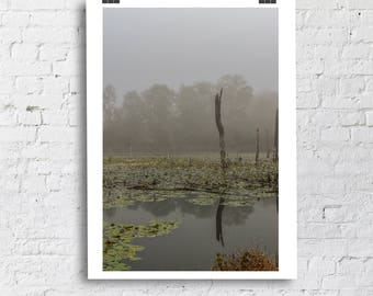 Fog on the Marsh - Nature Photo, Landscape Photography, Fall Landscape, Country Home Decor, Farmhouse Decor, Lake House, Home Office Decor