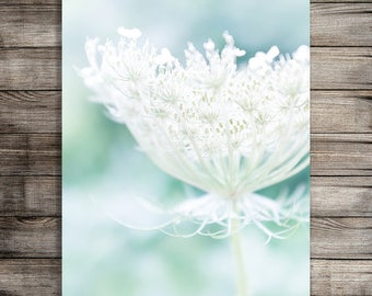 Queen Annes Lace Print, Botanical Print, Office Decor Printable Nature Art Print, Flower Photography Print, Photography Download Nursery Art