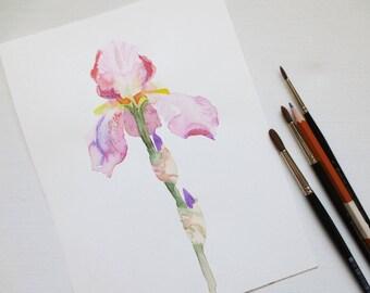Watercolor iris original painting, original watercolor flower, small painting, original painting wall art, wall decor, affordable art, gift