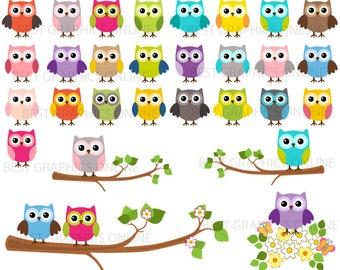80% OFF SALE, Owl clipart, Owl, Cute owl clipart, Owl  Scrapbooking, Digital owl clipart, Colorful rainbow owl clipart set, Owl clip art LL6