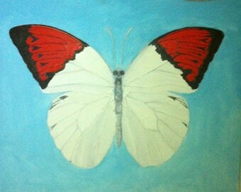 Red Tipped Butterfly Oil Painting