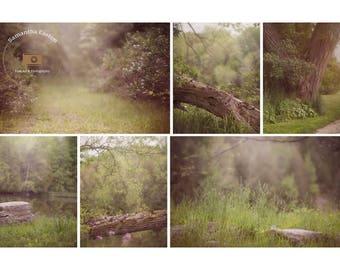 Summer Creamy Digital backdrops, digital background, Dreamy background, Forest background, Forest backdrop, Summer backdrop background