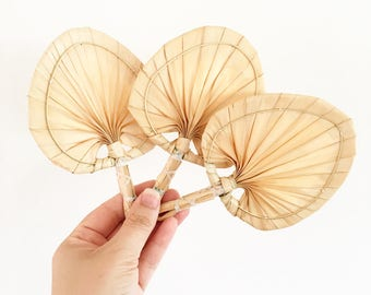 3 miniature Pandan woven fans - wall decor Bohemian Jungalow Boho Eclectic Decor Home Style - asia straw fan basket wall baby nursery #0543