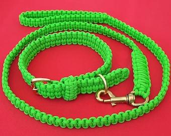 Paracord dog buckle collar and lead/leash