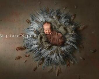 Newborn Digital backdrop digital background baby boy or girl  wreath feathers brown gray nest     #63