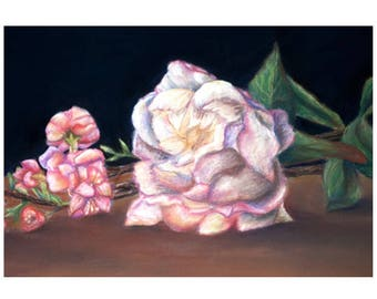 Peony and Pink Flowers Pastel Drawing Print