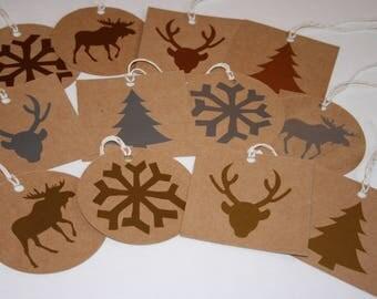 Christmas Gift Tags, Holiday Gift Tags, Mettallic Gift Tags, Set of 12 Gift Tags, Christmas Tags