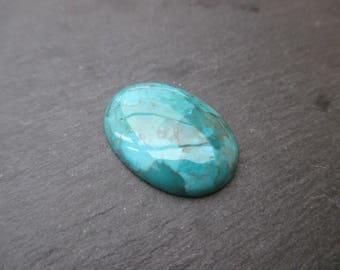 Turquoise: 25 mm * 18 mm - blue semi-precious stone cabochon