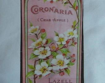 Transfer label: pretty spring flowers
