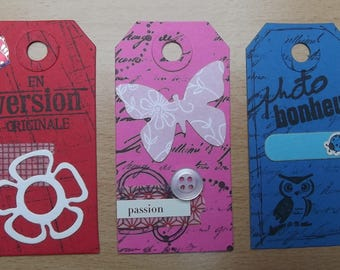 3 tags, 1 red, 1 blue and 1 Pink for your scrapbooking creations.