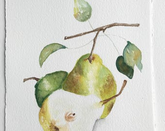 Original Watercolor Painting || Pears || Watercolor Painting || Watercolor Illustration || Fine Art || Home Decor || Kitchen Art || Food Art