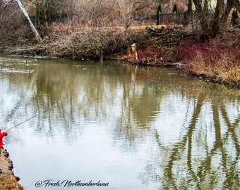 Nature Photography Peaceful River Fishing Print