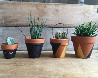 Decorative cactus and succulent terracotta pot
