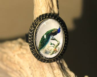 "Small bronze Steampunk Adjustable ring retro vintage ""The Peacock"""