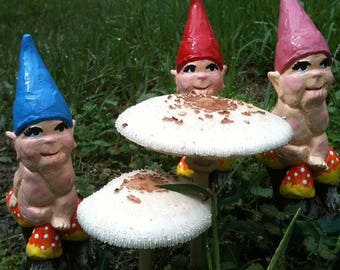 Baby Gnome - choice of colours