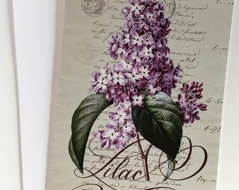 Vintage Lilac Illustration, Greeting Card, Botanical Illustration, Botanical Print, Any Occasion Card, Blank Card, Calligraphy