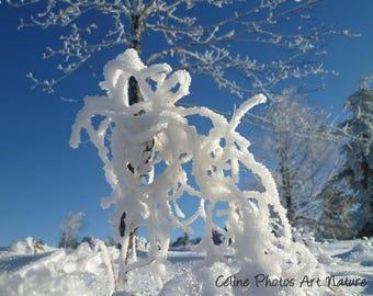 """Poster à partir d'une photographie de Céline Photos Art Nature d'un paysage de  neige """" Sculpture de neige"""""""
