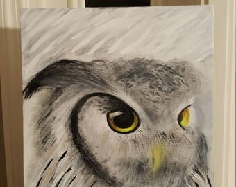 Owl of the Pasture