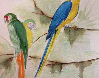 Watercolor painting, bird, painting, Parrot
