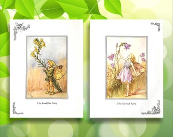 Harebell and Toadflax Flower Fairy Print from vintage book. Woodland Fairies Nursery themed gift for girl. Illustration for framing