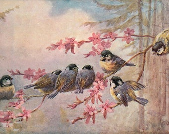 VINTAGE TABLE SET, ORIGINAL design, WASHABLE and durable - meeting of chickadees on a tree in bloom - classic.