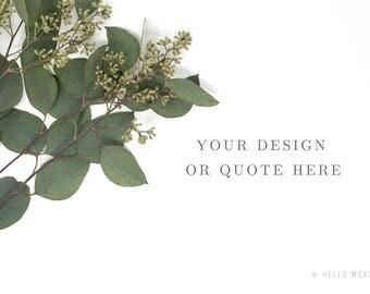 Styled Stock Photography - Eucalyptus Styled Stock Photography - Flower Stock Images - Stock Images