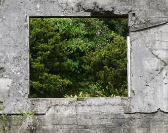 Photo print: through the window