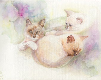 Little white cats, animal, personalized portrait, loss of a pet drawing with colored pencils, watercolor, illustration, sweetness